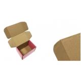 embalagens papelão personalizadas Jardim Aracília